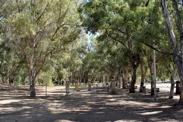 Ένα οικολογικό πάρκο «γεννιέται» μέσα στον αστικό ιστό της Πάτρας!