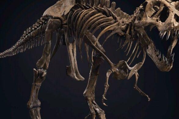 Τιμή ρεκόρ για τον σκελετό του τυραννόσαυρου «Stan»