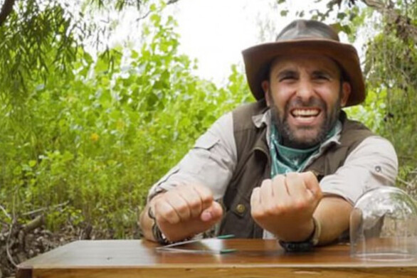 YouTuber αφήνει επικίνδυνα έντομα να τον τσιμπήσουν (video)