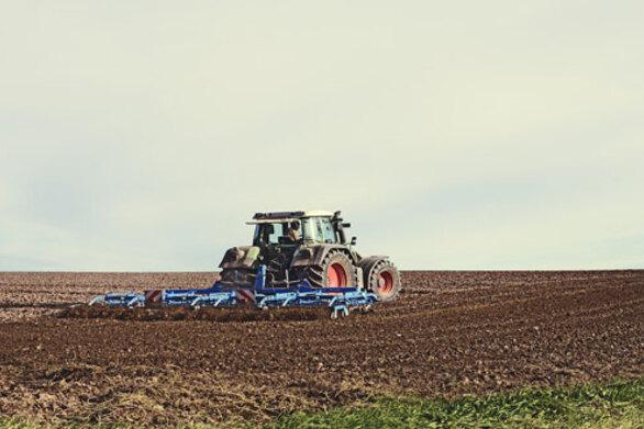 Αχαΐα - Ολοκληρώθηκε η δημοπρασία για την εκμετάλλευση ξηρικού αγρού εκτάσεως 6 στρεμμάτων στα Σαγέικα