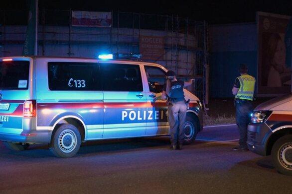 Αυστρία: 31χρονη σκότωσε τα τρία της παιδιά και παραδόθηκε