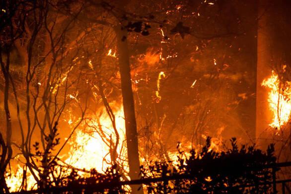 Το 2019 καταγράφηκαν περισσότερες φυσικές καταστροφές