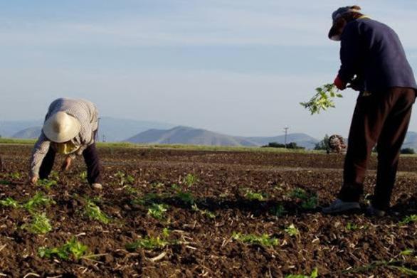 ΥπΑΑΤ - Πάνω από 375 εκατ. σε αγρότες