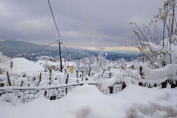 Σε χαμηλά επίπεδα η χιονοκάλυψη στην Ελλάδα για δεύτερο χειμώνα (χάρτης)
