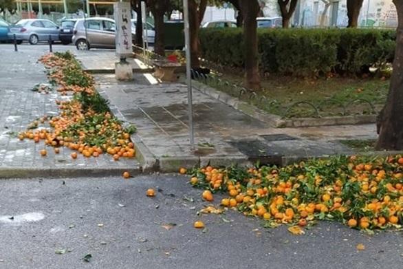 Πάτρα: Γέμισε ο πεζόδρομος της Τριών Ναυάρχων από πεσμένα νεράντζια