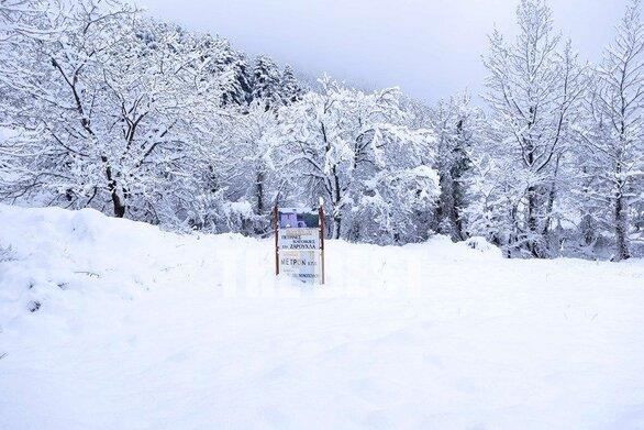 """Μικρή """"Ελβετία"""" η Ζαρούχλα της Αχαΐας από το χιόνι!"""