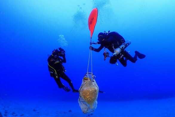 Κάσος: Δύτες ανασύρουν αρχαία ναυάγια (φωτο)