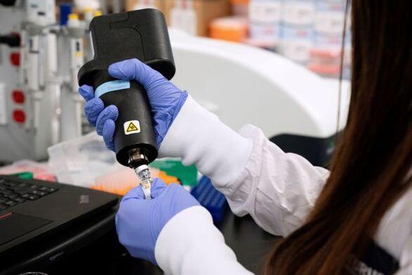 Eπιστήμονες μεγάλωσαν έμβρυα τρωκτικών μέσα σε τεχνητή μήτρα