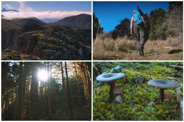 """Πεζοπορία στην κορυφή """"Κοκκινόβραχος"""" του Παναχαϊκού όρους - Εκεί που άνθρωπος και φύση γίνονται """"ένα"""" (video)"""