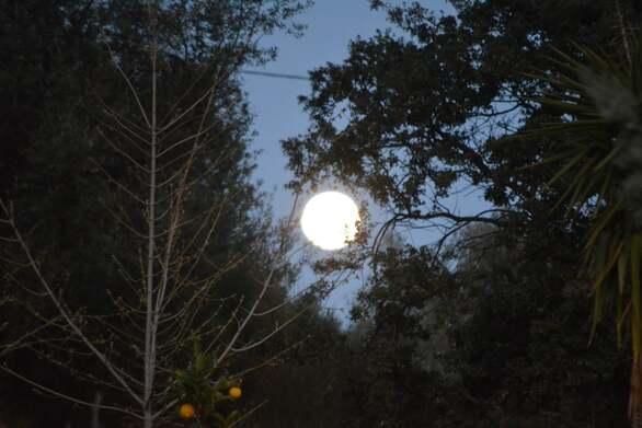 Κι έχει ένα φεγγάρι απόψε στην Πάτρα (pics)