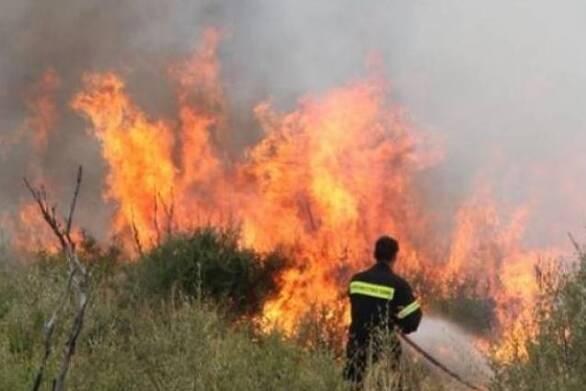 Πάτρα: Φωτιά εκδηλώθηκε στα Μοιρέικα