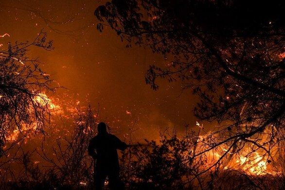 Αχαΐα: Μάχη τη νύχτα με τις φλόγες στον Σελινούντα
