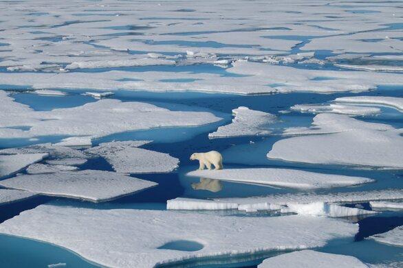 Έρευνα της Epson αποκαλύπτει ανησυχητική έλλειψη αντίληψης της κλιματικής πραγματικότητας