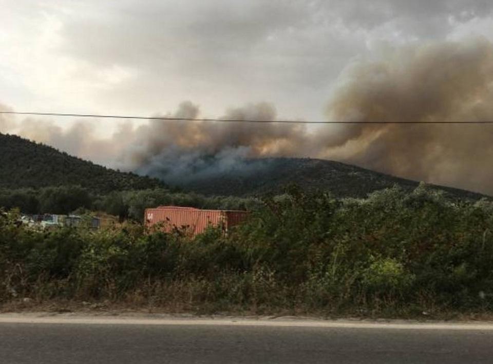 Ανεξέλεγκτη η φωτιά στη Θάσο (pics+video)  50cbada8de0
