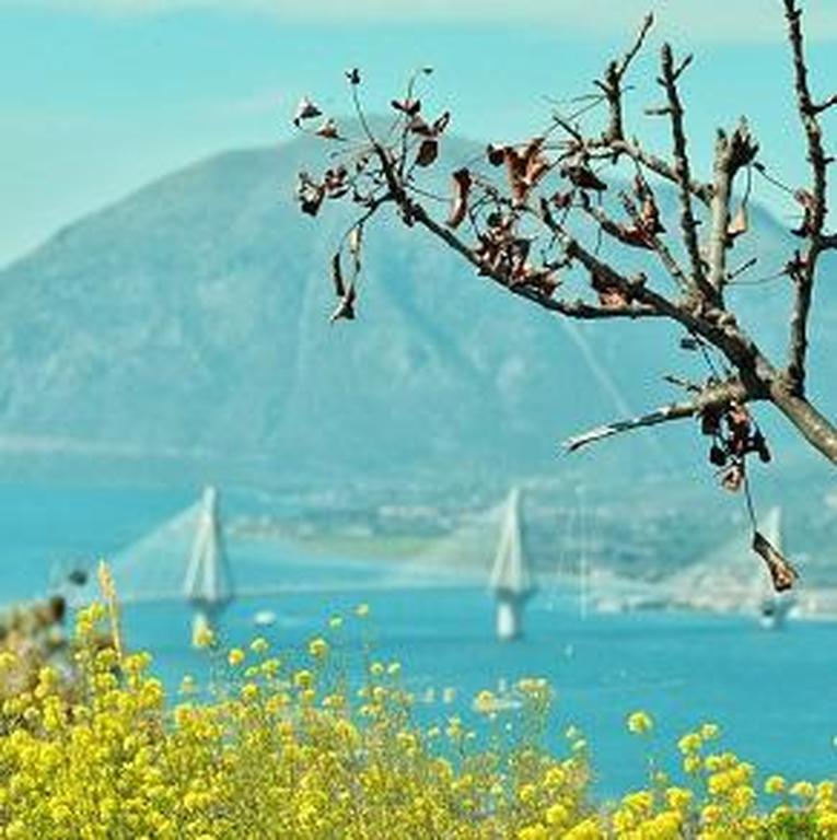 Ραντεβού στην γέφυρα– Δεκάδες Πατρινοί κάνουν την βόλτα Ρίο-Αντίρριο με τα πόδια!